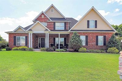 St Francois County Single Family Home For Sale: 813 Cimarron Circle