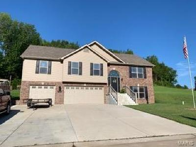Hillsboro Single Family Home For Sale: 107 Willow Branch