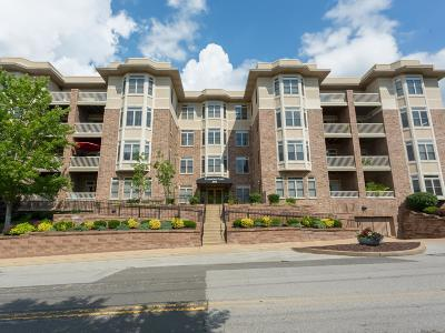 Condo/Townhouse For Sale: 540 North And South #106
