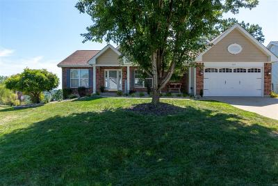 Festus Single Family Home For Sale: 1916 Hawk Pointe Drive