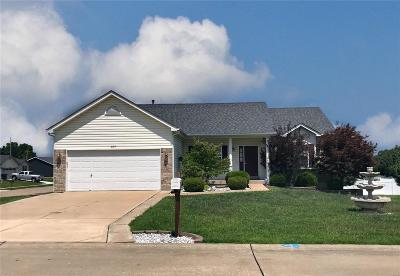 Lincoln County, Warren County Single Family Home For Sale: 107 Lake Tucci