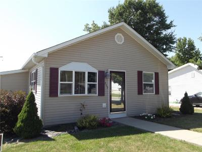 Monroe City, Paris, Perry, Stoutsville, Center, New London, Vandalia Single Family Home For Sale: 312 Gill Street
