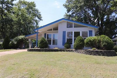 Ballwin Single Family Home For Sale: 317 Chamberlin Drive