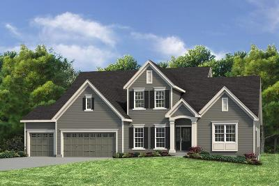 St Charles County Single Family Home For Sale: 1 Glenhurst Ii @ Meyers Ridge