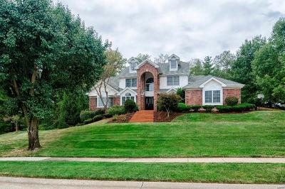 Chesterfield Single Family Home For Sale: 17025 Chesterfield Estates Court