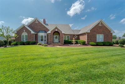St Charles County Single Family Home For Sale: 40 Crocknaraw Lane