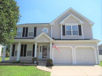 Fairview Heights Single Family Home For Sale: 224 Crystal Lane
