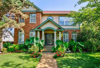 St Louis Single Family Home For Sale: 4147 Westminster Place