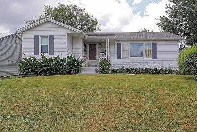 Desloge Single Family Home For Sale: 508 East Elm