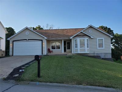 Barnhart Single Family Home For Sale: 1931 Birchwood Drive