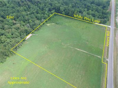 Residential Lots & Land For Sale: 3158 Ames Rd
