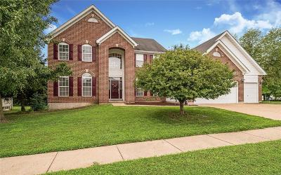 St Louis County Single Family Home For Sale: 1296 Hermans Orchard