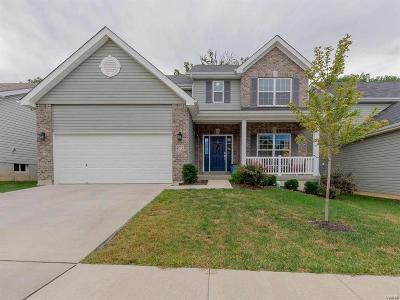 Ballwin Single Family Home For Sale: 972 Meramec Grove