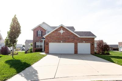Fairview Heights Single Family Home For Sale: 861 Saybrook Falls Drive