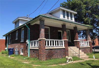 Belleville Single Family Home For Sale: 113 Mascoutah Avenue