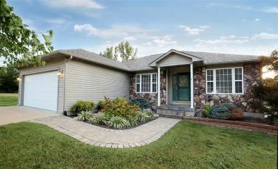 St Francois County Single Family Home For Sale: 8 Parkside Court