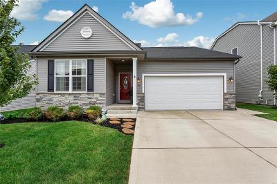 Single Family Home For Sale: 2348 Banon Drive