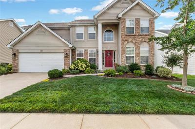 Single Family Home For Sale: 1052 Golden Orchard Drive