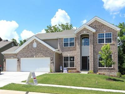 Single Family Home For Sale: 15909 Fox Trotter Court