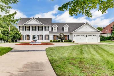 Lake St Louis MO Single Family Home For Sale: $825,000