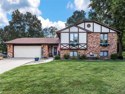 Collinsville Single Family Home Active Under Contract: 1977 Mapleleaf