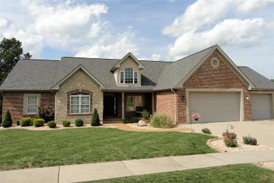 Franklin County Single Family Home For Sale: 2205 Weber Heights Drive