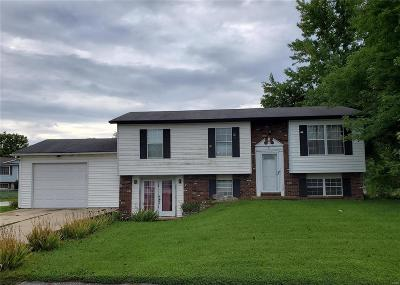 Brighton Single Family Home For Sale: 34173 Catfish Court