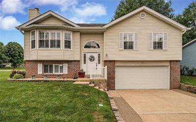Lake St Louis Single Family Home For Sale: 1201 Sandstone