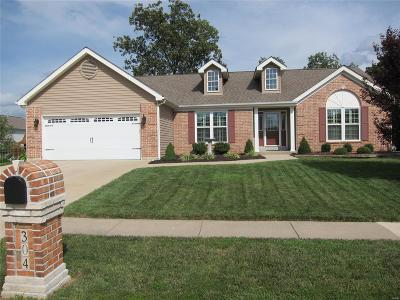 Wentzville Single Family Home For Sale: 304 Pleasant Meadows