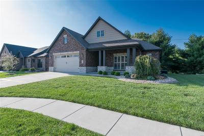 Edwardsville IL Single Family Home For Sale: $479,900