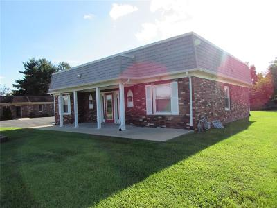 Granite City Commercial For Sale: 4741 Maryville Rd