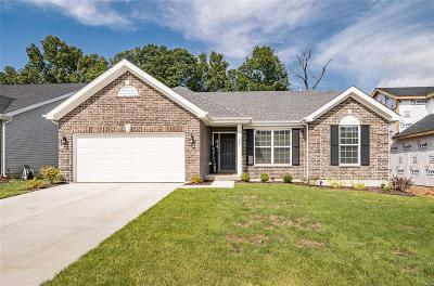 O'Fallon Single Family Home For Sale: 153 Keystone Ridge Drive