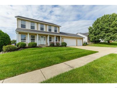 St Charles Single Family Home For Sale: 881 Chestnut Oak