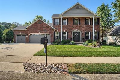 Edwardsville IL Single Family Home For Sale: $449,000