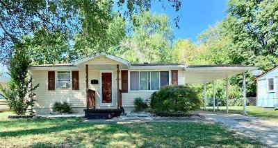 Granite City Single Family Home For Sale: 2325 Paul Avenue