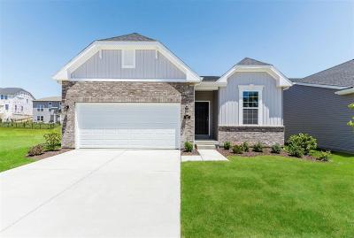 Lake St Louis Single Family Home For Sale: 167 Noahs Mill Drive