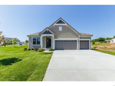 St Charles Single Family Home For Sale: 1050 Sandfort Farm Drive