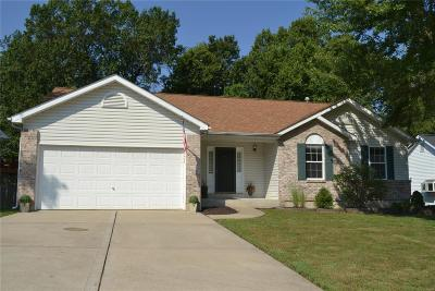 St Peters Single Family Home For Sale: 125 Stage Coach Landing Drive