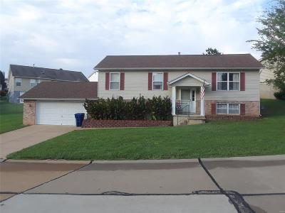 Jefferson County Single Family Home For Sale: 1317 Apple Hollow