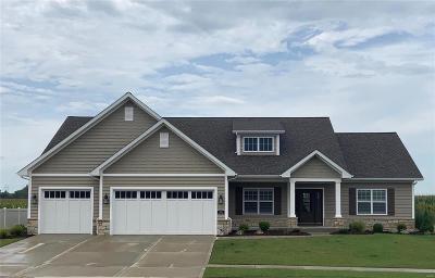 O'Fallon Single Family Home For Sale: 1323 Ashton Falls Drive