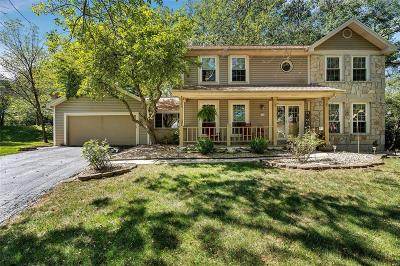 St Charles Single Family Home For Sale: 116 Iron Lake Court