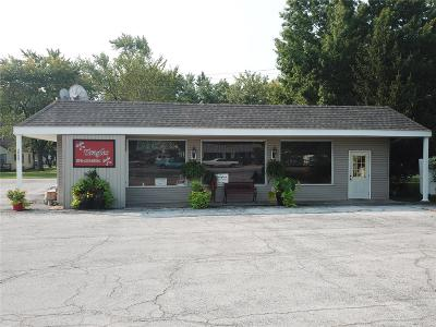 Monroe City MO Commercial For Sale: $125,000