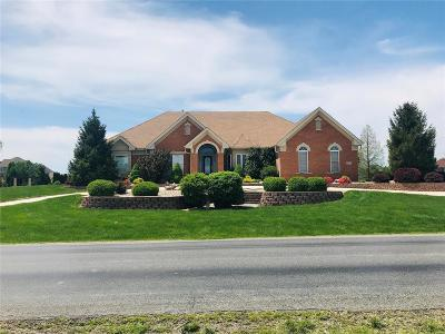 Caseyville Single Family Home For Sale: 577 Old Collinsville Road