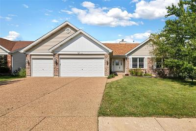 Wentzville Single Family Home For Sale: 228 Huntsdale Drive