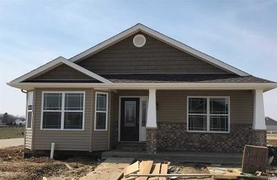 Belleville New Construction For Sale: 3901 Red Bird Lane