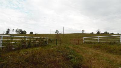 Franklin County, Gasconade County, Maries County, Phelps County, Osage County, Crawford County Farm For Sale: 847 Highway Aa