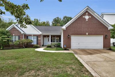 Chesterfield Single Family Home For Sale: 1185 Nooning Tree