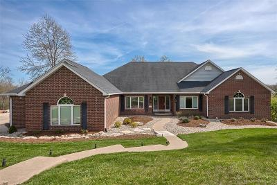 Edwardsville Single Family Home For Sale: 6624 Fox Creek Drive