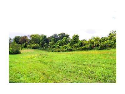 Scott County, Cape Girardeau County, Bollinger County, Perry County Commercial For Sale: 4 West Drive
