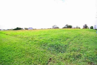 Scott County, Cape Girardeau County, Bollinger County, Perry County Commercial For Sale: 19 Independence St